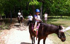 Rock Creek Park Horse Center | washington.org