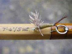 rod and fly