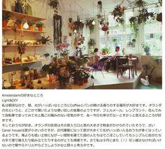 japans blog Hanging Plants, Christmas Tree, Holiday Decor, Amsterdam, Blog, Home Decor, Teal Christmas Tree, Decoration Home, Room Decor
