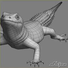 Lizard 2 Cordylus Tropidosternum Model available on Turbo Squid, the world's leading provider of digital models for visualization, films, television, and games. Sketchbook Project, Wireframe, Zbrush, Modeling, Fantasy Creatures, Animales, Modeling Photography, Models, Website Wireframe