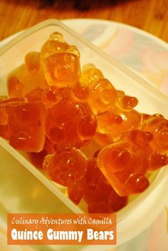 Culinary Adventures with Camilla: Quince Gummy Bears Low Carb Desserts, Low Carb Recipes, Snack Recipes, Healthy Recipes, Slovak Recipes, Czech Recipes, Low Carb Brasil, Fruit Roll Ups, Healthy Deserts