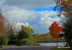 Walk in the park Montreal Canada, Photo S, Golf Courses, My Photos, Autumn, Park, Colors, Painting, Fall