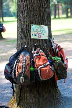 It's a Camp Shalom tradition to organize campers' backpacks and gear on tree trunks. Photo by Lorraine Greenfield.