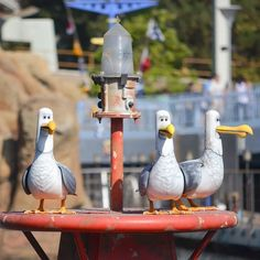 "The Finding Nemo seagulls that yell ""MINE MINE MINE"" all day."