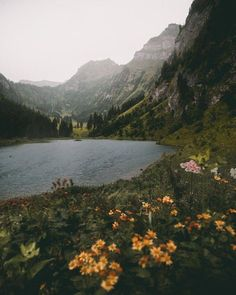 New nature landscape photography outdoors scenery 63 ideas Landscape Photography, Nature Photography, Photography Filters, Photography Tips, Mountain Photography, Travel Photography, Photography Reflector, Chair Photography, Photography Pricing