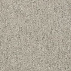 good neutral carpet color for warm or cool walls.  TrafficMaster Conference Call - Color Tumbleweed 12 ft. Carpet