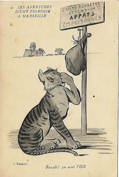 French antique postcard  1910s drawing cartoon picture * Tiger in Marseilles * Blank postcard by ExcusemyFrenchShop on etsy.com