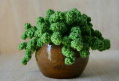 Crochet plant in recycled pottery by Kyla D'Aubbonnett of Bristle Design www.facebook.com/bristledesign