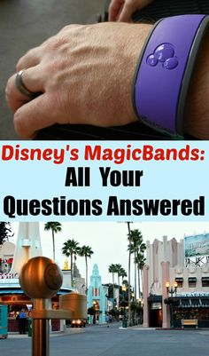Walt Disney World MagicBands : How and When to Use Them
