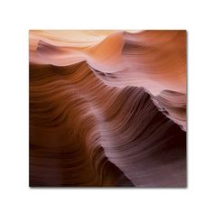 """Trademark Art """"Smooth I"""" by Moises Levy Photographic Print on Wrapped Canvas Size:"""