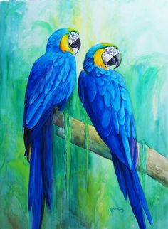 blue throated macaw drawing - Google Search