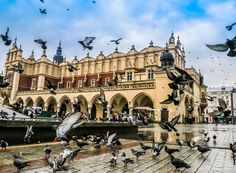 Get to know everything about Krakow :) #krakow #poland