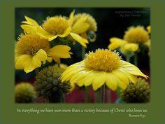 Romans 8:37