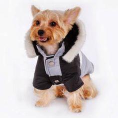abrigo+plumas+impermeable+para+perros+kukasworld+feather+jacket++coat+anorak+dog+ropa+para+mascotas+moda+canina+41.jpg (260×260)