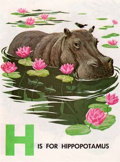 Animal ABC Book illustrated by Herbert Kane. Published by Elf Books / Rand McNally & Company.