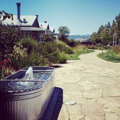 Monday daydreaming. Tag someone you want to go on a Napa getaway with this summer. Photo credit: @liatclark #lovely #mondaymotivation #carnerosinn #summer #beautiful #adventure #getaway #wanderlust #escape #vacation #napa  #dreamy #happyplace