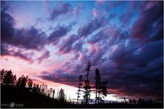 Pretty purple pink and blue sunset sky in the Colorado Mountains at the B Lazy 2 Ranch and Event Center. - April O'Hare Photography http://www.apriloharephotography.com