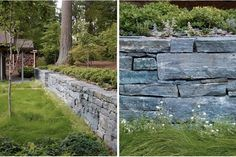 Privacy, Please: A Garden Where Trees and Shrubs Hide the Neighbors Gardenista