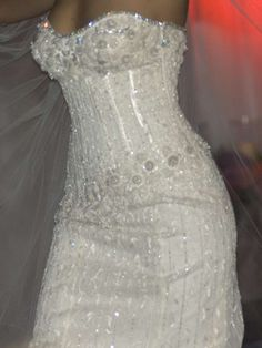 The most expensive wedding dress has been designed and developed by Jeweler Martin Katz and dressmaker Renee Strauss and the dress is adorned with numerous 150 carat diamonds.  Affectionately called, The Diamond Wedding Gown, this one of a kind luxury wedding dress carries price tag of a whopping 12 million.