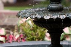 The Fountain at Salem College