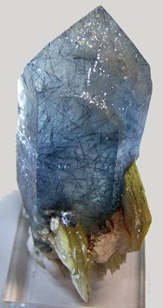 "Olenite in Quartz. Sprays of Blue Tourmaline in a terminated Quartz Crystal ~ Diamontina, Minas Gerais, Brazil.  4 5/8"" x 1 1/2""."