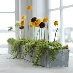 Galvanized metal planter