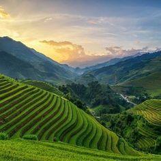 Mu Chang Chai , Vietnam  #nature #followforfollow #follow #mountains #land #landspace #vietnam #likes #love #relax #beautiful #today