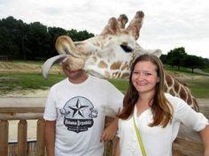 Ir al zoo, hacerte una foto y que una jirafa se cuele en ella repentinamente haciéndote burla es algo que no ocurre todos los días.