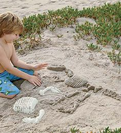 Sandosaurs Dino Molds. I can see using this in the backyard dirt. My son could be a paleontologist for the day.