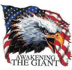 The Giant's Awakening American Flag Eagle, American Freedom, American Spirit, American Pride, Patriotic Pictures, Eagle Pictures, Eagle Images, Patriotic Quotes, I Love America