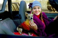 Reese Witherspoon as Elle Woods in Legally Blonde