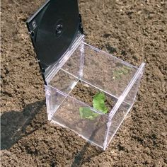 mini greenhouse of old cd cases-i have enough of these laying around!