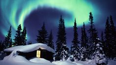 The Boreal Forest, Norway