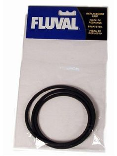 Fluval Filter Lid O-Ring for FX5/FX6 - ON SALE! http://www.saltwaterfish.com/product-fluval-filter-lid-o-ring-for-fx5fx6