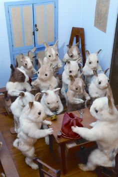 The Creepy Victorian-Era Stuffed Rabbits and Squirrels of 'Walter Potter's Curious World of Taxidermy'