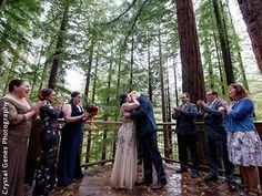 Hoyt Arboretum Weddings Portland Wedding Venue Portland OR 97221
