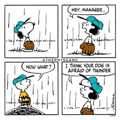 #thepntsgang #pnts #schulz #snoopy #charliebrown #lucy #manager #dog #afraid #thunder