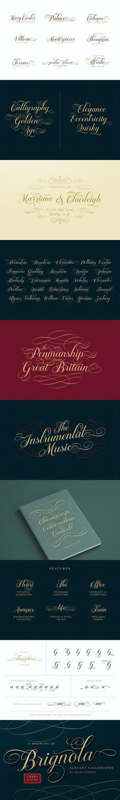 Brignola - Elegant Calligraphy - Web & Graphic Design on SVG Ninja Elegant Fonts, Scottish Gaelic, Typography, Lettering, Script, Calligraphy, Graphic Design, Ninja, Classy Fonts