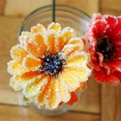 Fake flowers + Borax = Beautiful, sparkly, crystal flowers