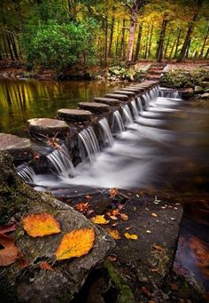 Stepping stones across the Shimna river in Tollymore Forest Park, Tollymore, Ireland.
