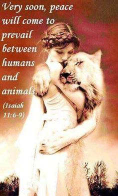 "In Jehovahs Kingdom, no human or animal will feel dread. You will be able to hug any animal you choose. ""They will not cause harm in all my Holy Mountain"". All of the animals and humans will eat vegetation. Favorite Bible Verses, Bible Verses Quotes, Bible Scriptures, Wisdom Bible, Bible Truth, Animals In The Bible, Paradise Pictures, Life In Paradise, Isaiah 11"
