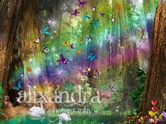 Many Butterflies flying out of redwood tree, two swans swimming by in a green pond and a deer