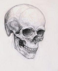Skull by *Nachiii on deviantART