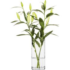 Tall Clear Siluett Vase design by Sagaform ($40) ❤ liked on Polyvore featuring home, home decor, vases, sagaform, hand blown glass vases, hand-blown glass vases, glass vases and glass home decor