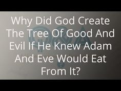 Why Did God Create The Tree Of Good And Evil If He Knew Adam And Eve Would Eat From It? - YouTube
