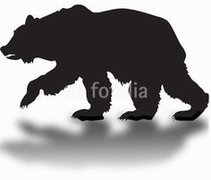 silhouette of a black grizzly bear