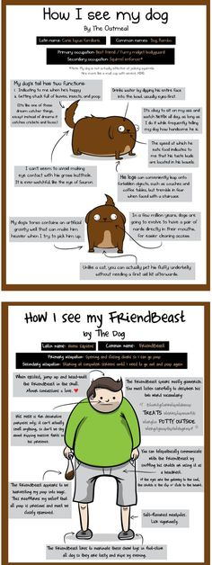How I See My Dog - How My Dog Sees Me is a funny comic by Matthew Inman of The Oatmeal full Dog Facts & Tips for owners