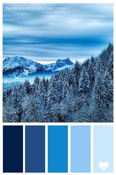 Website Color Palette, Black Color Palette, Monochromatic Color Scheme, Blue Colour Palette, Blue Color Pallet, Ice Blue Color, Blue Color Combinations, Color Schemes Colour Palettes, Forest Color