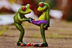 Free vector graphic: Frog, Funny, Animal, Cartoon - Free Image on . Frog Pictures, Funny Animal Pictures, Funny Images, Funny Photos, Cute Funny Animals, Cute Baby Animals, Funny Cats, Funny Jokes, Funny Frogs