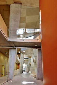 School of Architecture, Bond University by CRAB studio